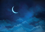Vector  night sky background with moon.
