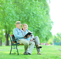 Elderly couple reading a book in park