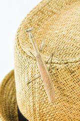 praying mantis on hat