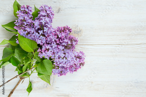 Foto Spatwand Lilac beautiful lilac on white wooden surface
