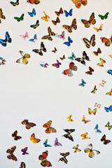Стая бабочек на сером фоне с пространством для вашего текста