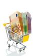 Geldscheine in einem Einkaufswagen