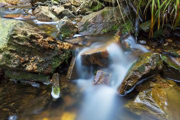 Steiniger wildbach im Hohen Venn belgien