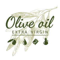 olive branch with logo