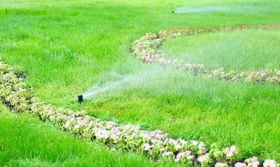 sprinkler water on the grass