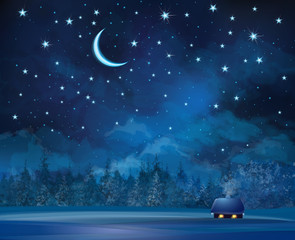 Vector night scene with house  on starry sky background and fore