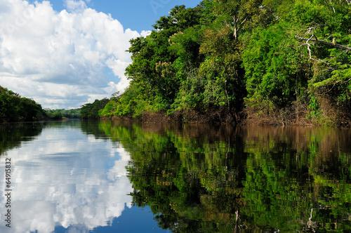Plakat Amazon river landscape in Brazil