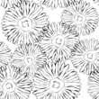 Vector black and white floral background Seamless pattern