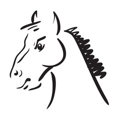 an horse on white background