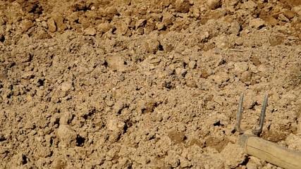 Hoeing the soil, preparing the soil for planting