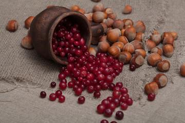cranberries and hazelnuts