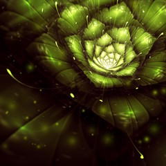 green abstract flower with sun rays