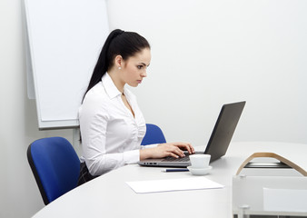 beautiful young business woman with computer in office