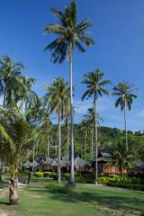 Isola di Phi Phi, thai bungalow.