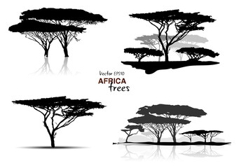 Silhouette of africa trees black on white background, vector