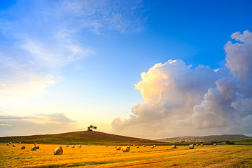 Tuscany, Maremma sunset landscape and thunderstorm cloud. Rural