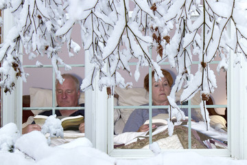 Winter Hibernation