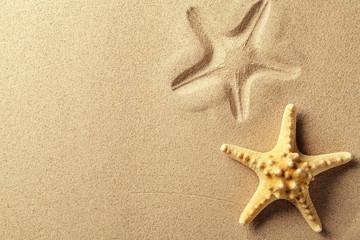 Seashell with imprint on beach sand