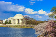 the Jefferson Memorial during the Cherry Blossom Festival. Washi