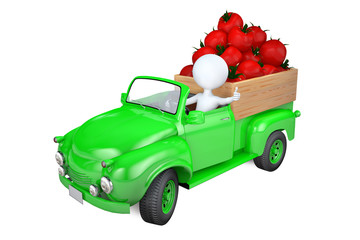 Little man transports tomato by the truck