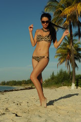 Young brunette in animal print bikini posing on tropical beach