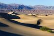 Zdjęcia na płótnie, fototapety, obrazy : Death Valley National Park