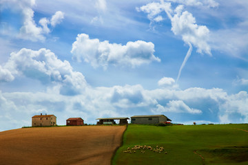 A rural countryside, with blue sky