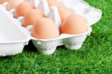 Fresh eggs on the lawn
