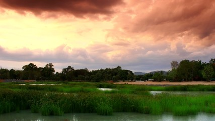 Time lapse of the pond with grass  and dark cloud move