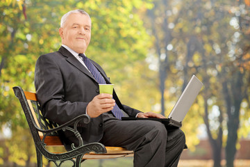 Mature businessman taking a break in park