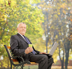 Mature businessman working on a laptop in park