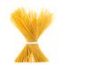 pasta, spaghetti