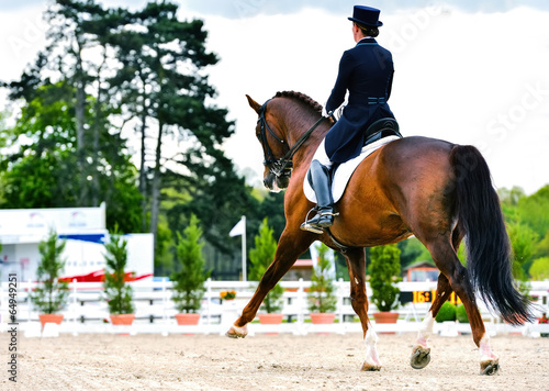 dressage horse and woman rider - extended trot - 64949251