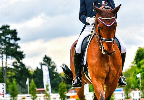 Fotobehang Paardensport dressage horse and rider