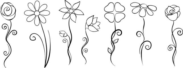 Blüten Set Sammlung