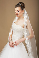 Pensive Bride with Veil Dreaming