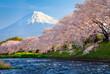 Leinwanddruck Bild - Fuji and Sakura