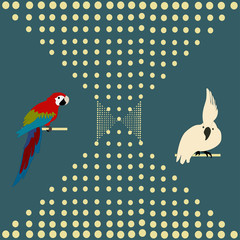 Abstraction with parrots