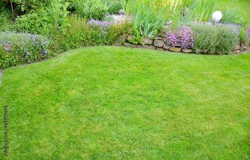 freie Rasenfläche mit Blumen - 64955656