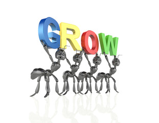Ants Team forming grow word