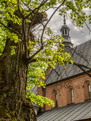 St James Church in Sandomierz