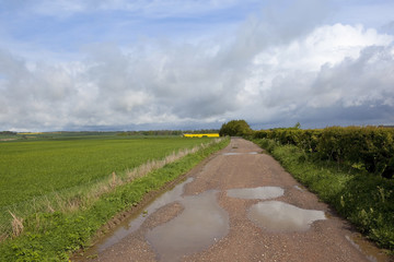 farm track with puddles