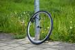 Fahrrad weg 2