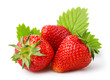 Ripe strawberries with leaves isolated on a white