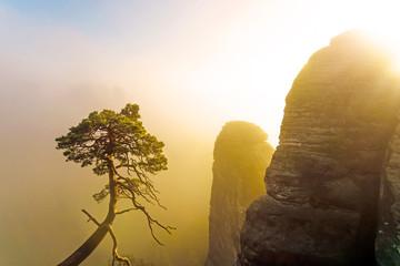 Morgensonne bei Nebel im Gebirge