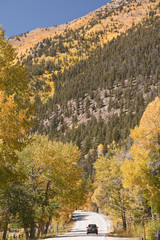 independence pass in fall colorado foliage