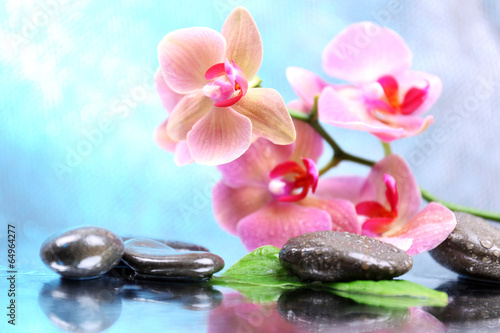 Composition with beautiful blooming orchid with water drops and - 64964277