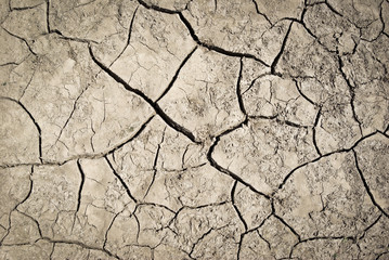 Cracks on parched earth at the bottom of the dried-up lake