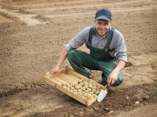 Happy farmer planting potatoes