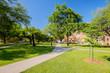 College campus - 64965830